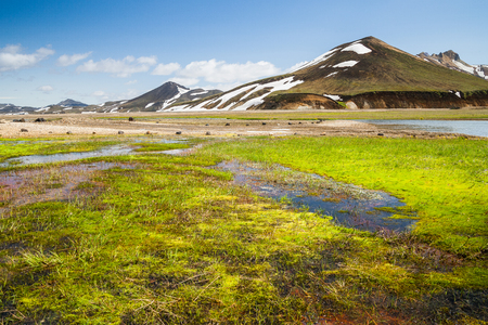 Road to Landmannalaugar in Iceland at summer