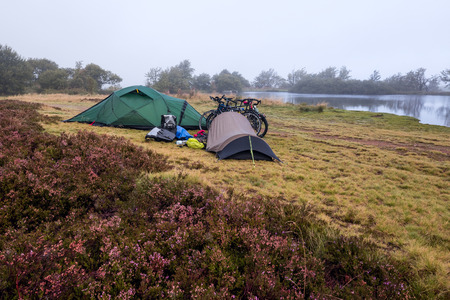 heathland: Camping in a flowering heath landscape at a foggy morning Stock Photo