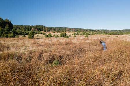 Wild natural landcape in Czech Republic