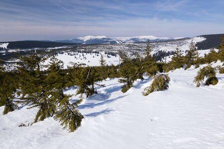 Landscape of the Giant mountains (Krkonose) in winter Standard-Bild