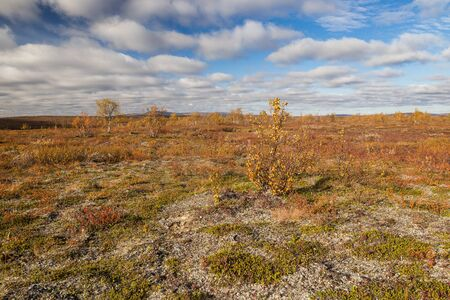 Autumnal fjell landscape in northern Finland