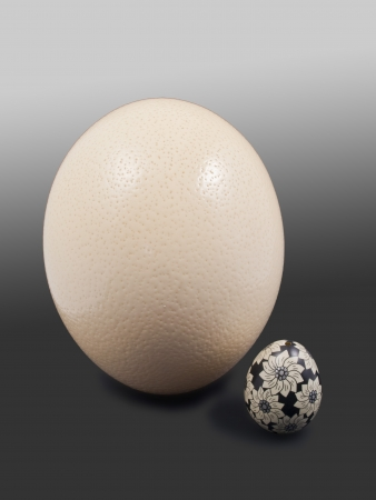 hen's: photograph of a hen s egg and one egg painted by an Australian emu Stock Photo