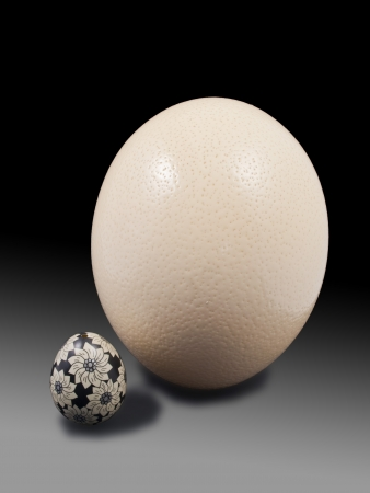 hen's: photograph of a hen s egg and one eggs painted by an Australian emu
