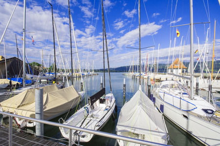 marina life: picture of a marina in evening summer light