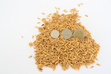 monete antiche: Vecchie monete messe in risaia gialla. Archivio Fotografico