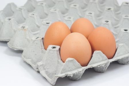 eggshell: Still Life- beautiful brown eggshell egg release. Closeup.