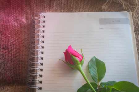 love letter: Still Life- roses lay on a note pad