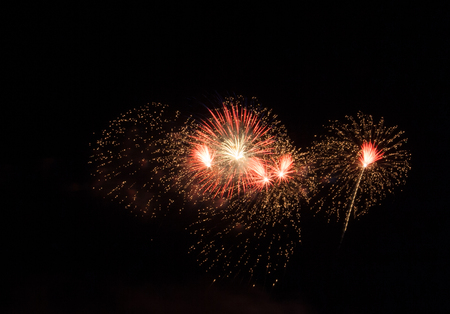 fire crackers: Night Fireworks show scene. Celebrated by a grand fireworks display.