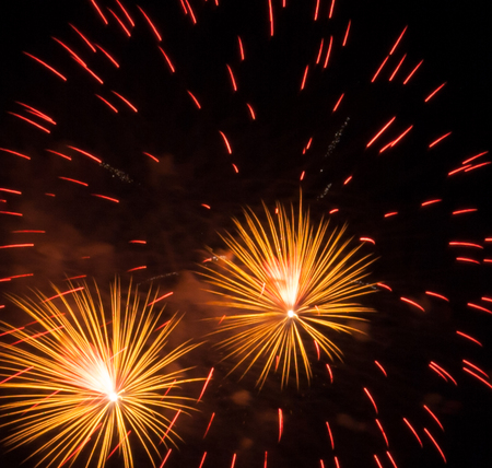 Night Scene, Fireworks show, beautiful. Celebration Fireworks Festival competition.
