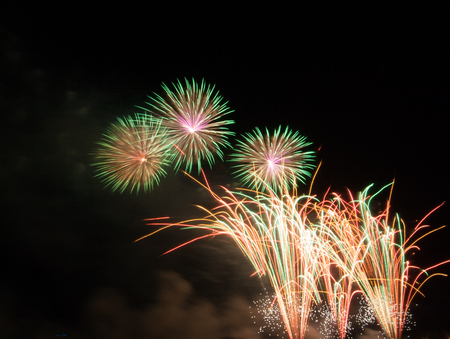 fire crackers: Fireworks. Fireworks show above the water surface in the park. The scene shows the night.