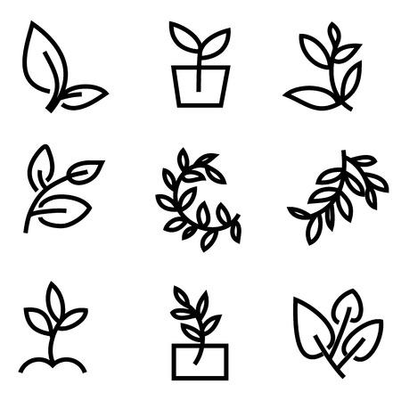 grass vector: Green Grass. Vector Illustration Illustration