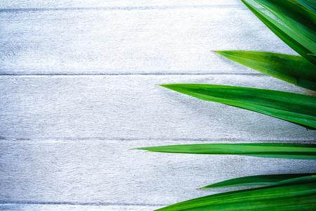 Green Pandan Leaf On Old Wooden Background