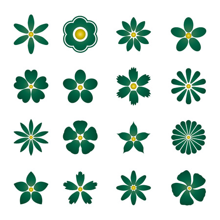 buds: Color Flower buds vector design elements isolated on white background. Illustration