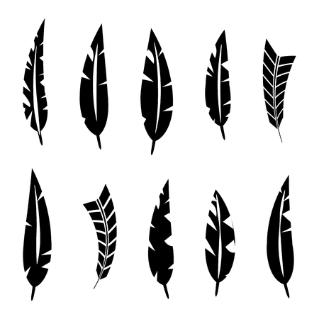 Set of various bird feathers. Black silhouettes on a white background, vector illustration. Banco de Imagens - 126038946