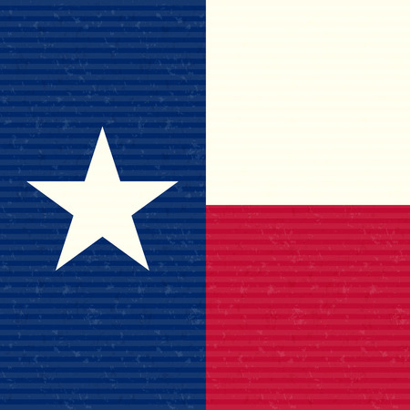 Texas Flag Close up Vector