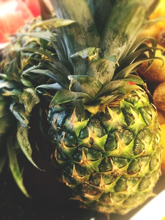 citrous: Pineapple close up Stock Photo