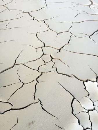 barren: Surface of barren ground