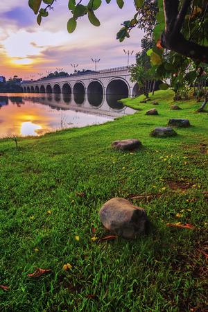Putrajaya Wetland in park greenie view Imagens