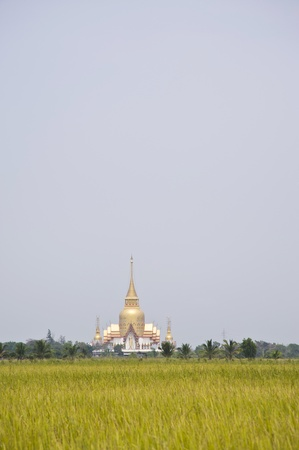 thai temple and rice fields photo