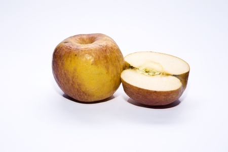 Rotten apples isolated photo