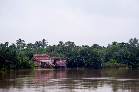 wood house near the river photo