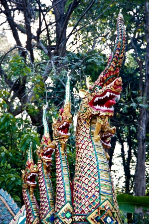 king of naga in thai temple,Chiang Mai,Thailand  photo