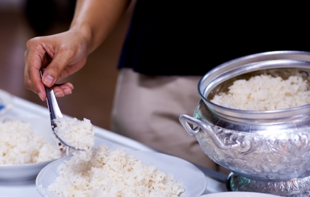 god s hand: put food offerings in a Buddhist monk s alms bowl, thailand