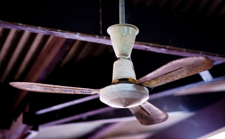 ceiling fans photo