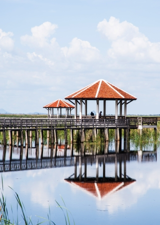 pavilion in swamp Stock Photo - 21942583