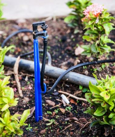 watering tool in garden