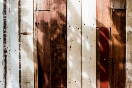 wood backgrounds: wood backgrounds Stock Photo