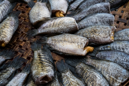 fish in market photo