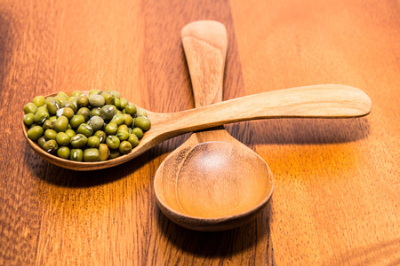 mung bean sprout: Mug beans in wood spoons