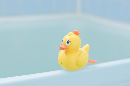 Plastic yellow duck toy photo