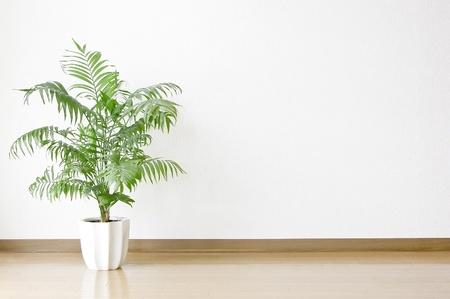 cozy interior design 写真素材