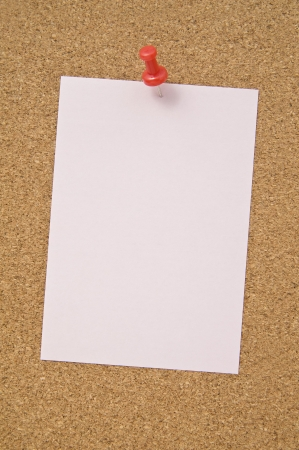 Blank notepad pinned on corkboard, close up  photo