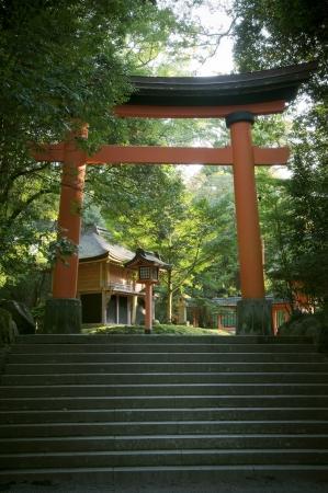 Precinct of japanese traditional shrine, landscape photography  Stock Photo