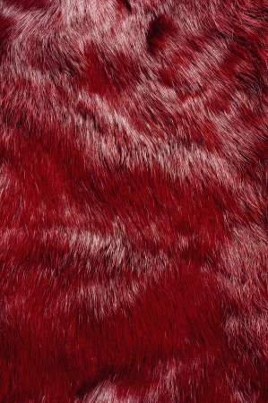 Red fur texture, close-up shoot of material for the background  photo