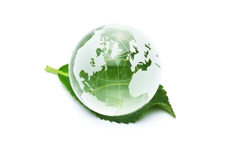 Clear glass globe with fresh green leaves  Imagens