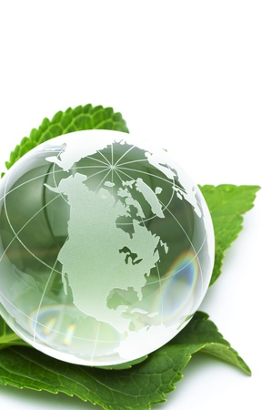 Clear glass globe with fresh green leaves  Stock Photo