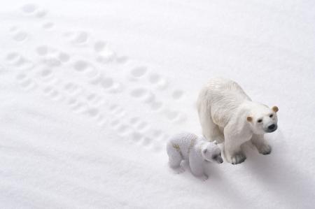 Polar Bear Family poup�es sur fond de neige Banque d'images