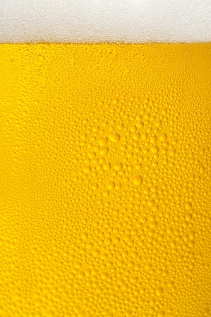 Close-up of beer and foam