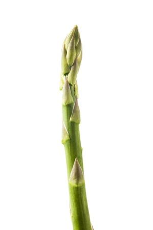 新鮮なグリーン アスパラガス