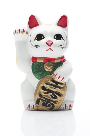 lucky cat on white background photo