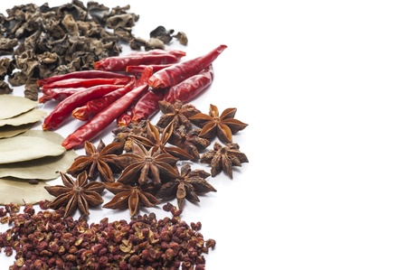 anis: The various spices on white background
