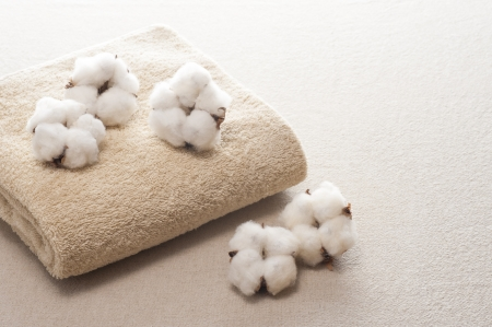 cotton flower and towel on cloth background
