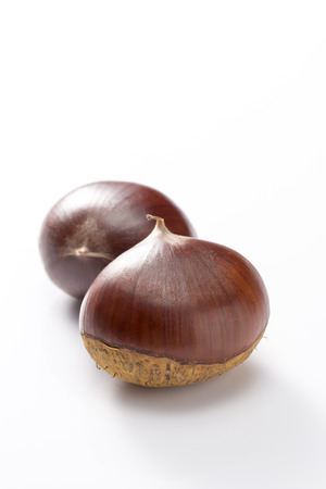 two chestnuts on white background Foto de archivo