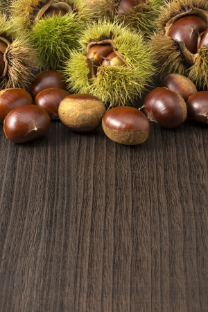 marron: many chestnuts with husk on dark wooden table