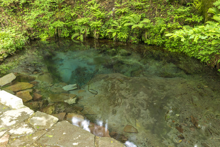 spring water: Oike spring water japan oitaprefecture