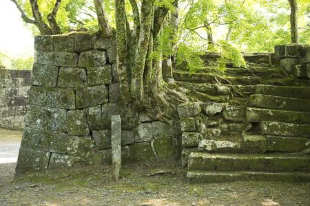oka: oka Castle Ruins Stock Photo